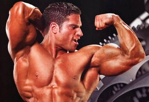 Principii Pentru Cresterea Masei Musculare