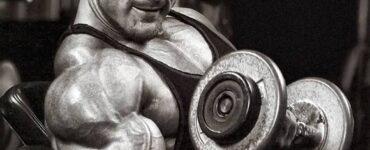 Sursa energiei musculare