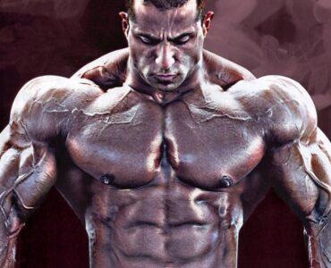Tipul fibrelor musculare